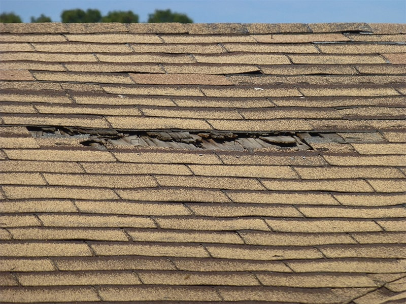 damaged-missing-shingles-rain-leak